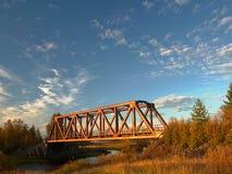 railway моста старый Стоковые Фото