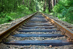 Railway. Track in the natural scenery Royalty Free Stock Images