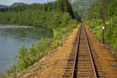 Railway along the river in Norway. Railway among trees and poles along the river Stock Image