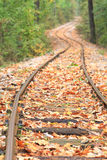 Railway in autumn Stock Photography
