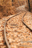 Railway autumn Royalty Free Stock Images