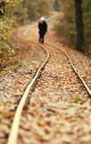 Railway in autumn Royalty Free Stock Photo