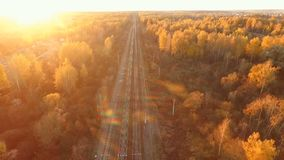 Railway in autumn forest stock video footage