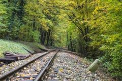 Railway in autumn forest Stock Photo