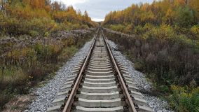 The railway in the autumn landscape. Going off into the distance Stock Photo