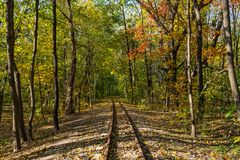 Railway and the autumn Royalty Free Stock Images