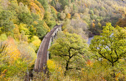 Railway in autumnal landscape Stock Photos