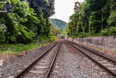 Railway at Bamboo forest of Arashiyama Stock Images