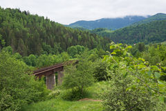 Railway bridge across canyon in the Carpathian Royalty Free Stock Photography