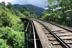 Railway bridge in jungle. Old railway is going through the jungle in Sri Lanka Royalty Free Stock Photography