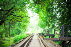 Railway Bridge and Rails with green leaf frame Stock Photography