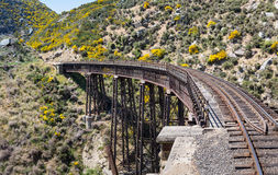 Railway bridge on Taieri Gorge New Zealand Stock Photography