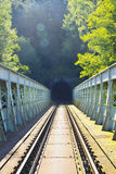 Railway bridge with a tunnel Royalty Free Stock Photo