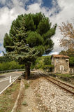 Railway crossover, Sardinia, Italy Royalty Free Stock Images