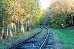 Railway through the fall Royalty Free Stock Images