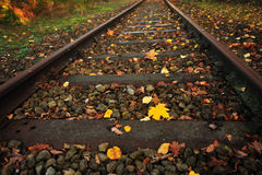 Railway with falling leaves Royalty Free Stock Photo