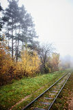 Railway in the fog going to perspective, golden leaves of the forest Royalty Free Stock Photo