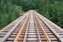 Railway through forest. An old railway through forest in Goldstream provincial park, vancouver island, british columbia Royalty Free Stock Images