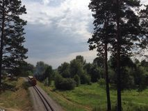 Railway. In forest Royalty Free Stock Images