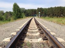 Railway. In forest Stock Photography