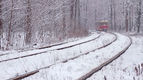 Railway in forest stock video