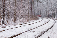 Railway in forest Royalty Free Stock Images