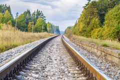Railway through the forest Royalty Free Stock Photos