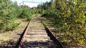 Railway. Forest railway rails Royalty Free Stock Photos