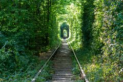 Railway through the forest. Tunnels of love Royalty Free Stock Photos