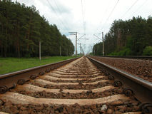 Railway in the forest Royalty Free Stock Photo