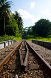 Railway Through a Forested Area Royalty Free Stock Images