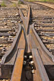 Railway Frog Stock Photo