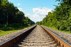 The railway goes to horizon, on both sides of the green dense forest Stock Images