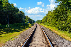 The railway goes to horizon, on both sides of the green dense forest Royalty Free Stock Photo