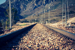 Railway in green landscape nature Stock Images