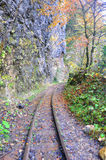 Railway in the Guam Gorge. Mezmay, Russia Stock Image