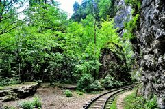 Railway in Guam gorge on one side of the rocks, the other a deep precipice and seething fast river Royalty Free Stock Photography