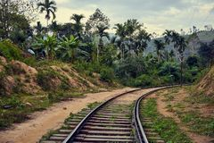 Old railroad in the rainforest stock images