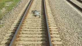 Railway Line and Embankment stock video