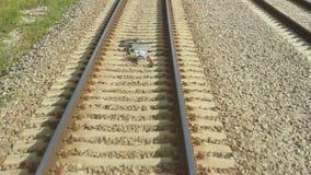 Railway Line and Embankment. Speed view stock video