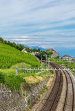 Railway line. Lavaux vineyard, blue sky. Canton Vaud, Switzerland Stock Images