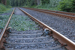 Railway line in a rural area Royalty Free Stock Photography