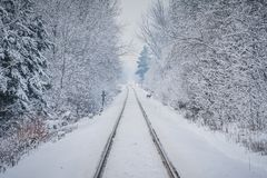 Railway lines winter scene and a deer. Winter railroad track diminishing into a distant hazy sunset Royalty Free Stock Photos