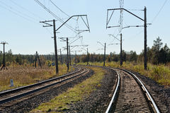 Railway in northern autumn forest Royalty Free Stock Images