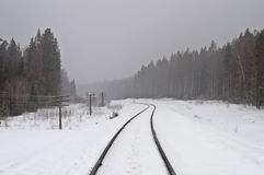Railway in the misty forest Royalty Free Stock Photography