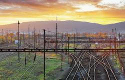 Railway, railroad lines at sunset Royalty Free Stock Photo