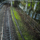Railway or railroad tracks for train transportation Royalty Free Stock Photos