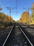 Railway rails  straight ahead,perspective. Railway rails  straight ahead in autumn,perspective Stock Images