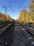 Railway rails  straight ahead,perspective. Autumn Royalty Free Stock Photo