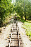 Railway rails at summer day Stock Image